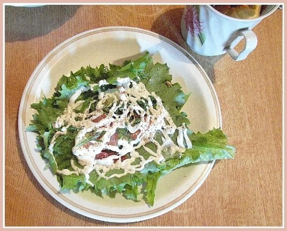 Ledus salātu lapā sagriež tomātus vai gurķus, dilles, kress...