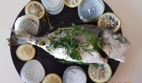 Zivs krāsnī no Skaidrā