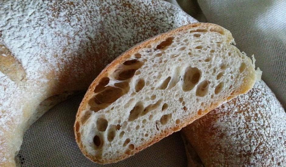 Tortano maize