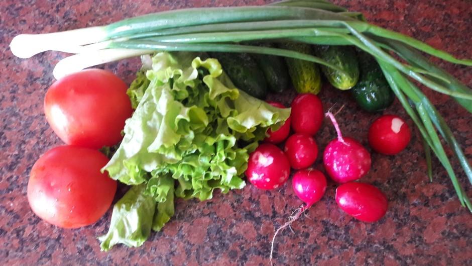 Visus nepieciešamos dārzeņus nomazgā un nosusina.