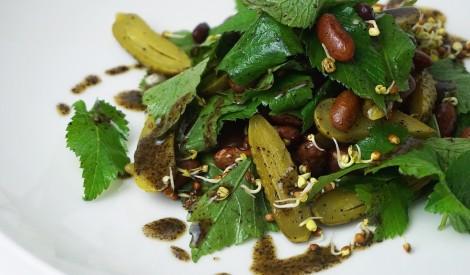 Gārsas salāti ar pupiņām, marinētiem gurķiem un kaņepju mērci