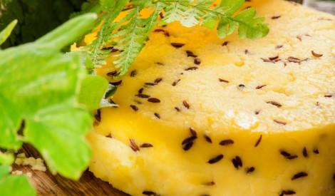 Jāņu siers