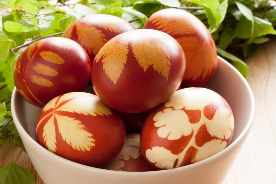 Olas uzmanīgi izņem, atbrīvo no aptinumiem, apslauka un ierī...