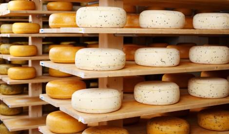 """Aizsargāto produkta nosaukumu """"Jāņu siers"""" drīkst izmantot seši Latvijas ražotāji"""