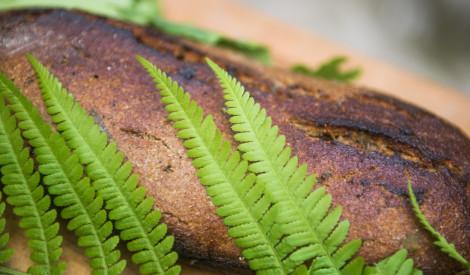 Rudzu spēka maize ar meža garšu