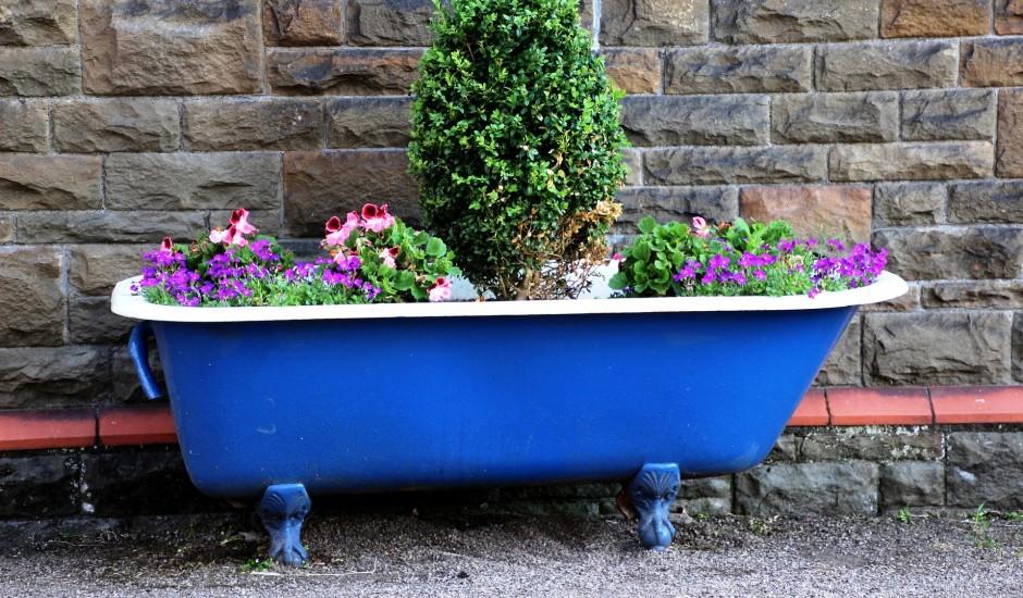 Izmēram un formai ir nozīme: izvēlies augiem atbilstošus podus