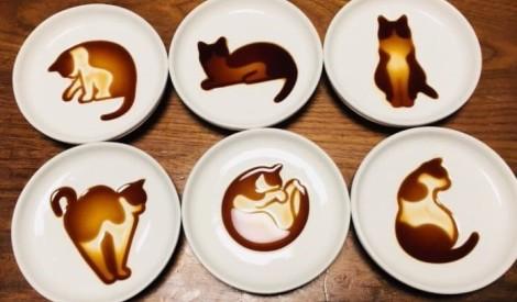 Mīlīgie sojas mērces kaķi: kāds ir viņu noslēpums?