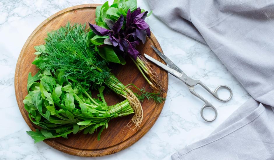 Ceļvedis garšaugu pasaulē: kuri zaļumi sader ar tavu mīļāko ēdienu?