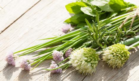 Tests: vai atpazīsti dārzeņu un garšaugu ziedus?