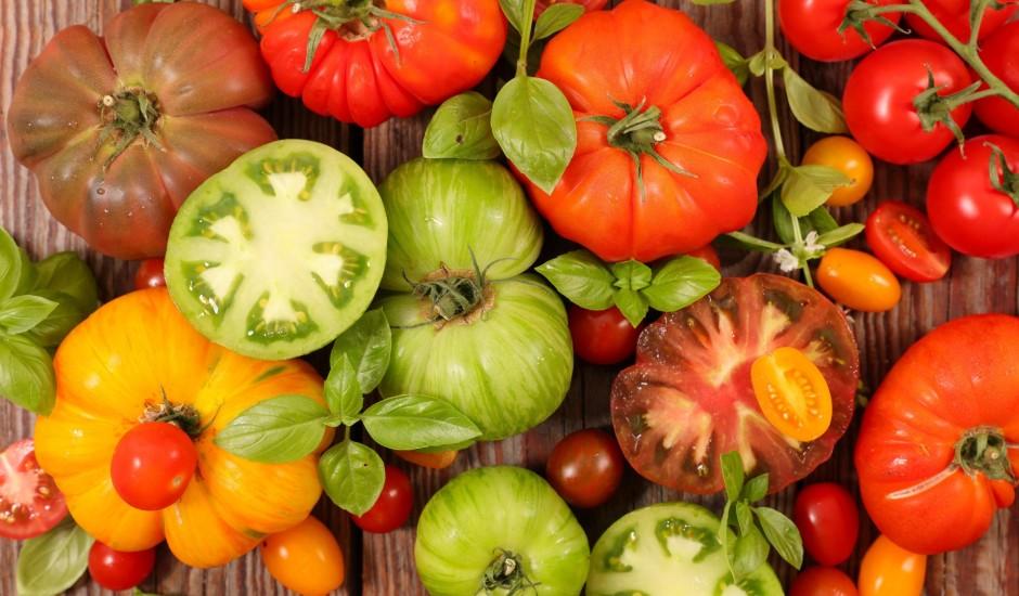 Tradicionālā tomātu izstāde Dabas muzejā jau rīt!