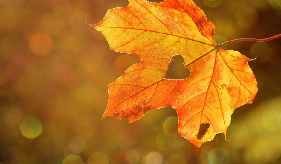 Kā būt gatavam rudens drēgnākajam posmam?