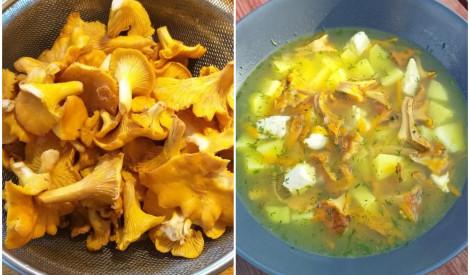 Gaileņu zupa ar vistas fileju un jaunajiem dārzeņiem